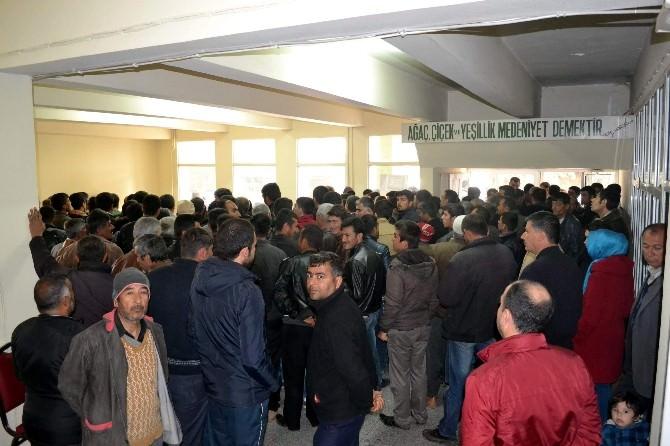 Orman İşletme Müdürlüğü'ne Alınacak 500 Kişi Kurayla Belirlendi