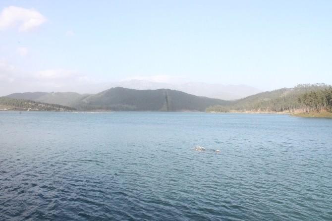 Alakır Barajı Taştı