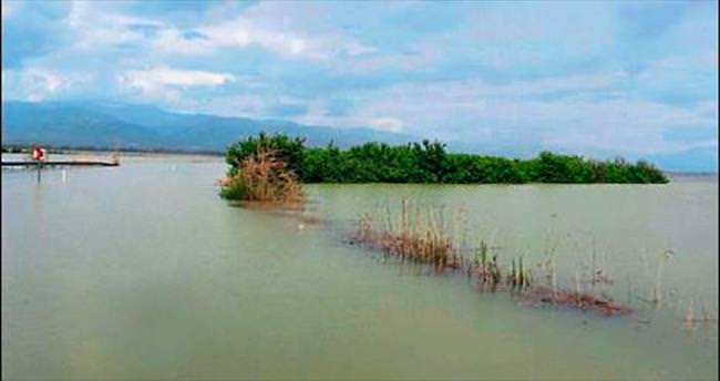 Baraj kapakları açıldı, tarım arazisi göle döndü