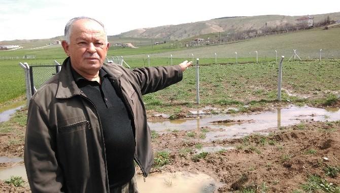 Arsası Sular Altında Kalan Vatandaş Yardım Bekliyor