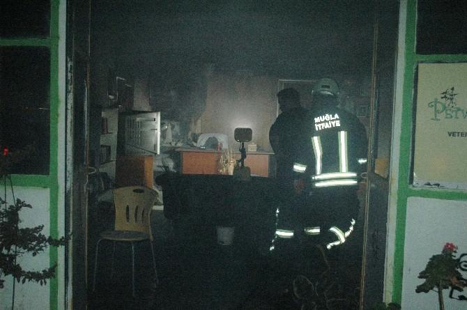 Veteriner Kliniğinde Çıkan Yangın Korkuttu