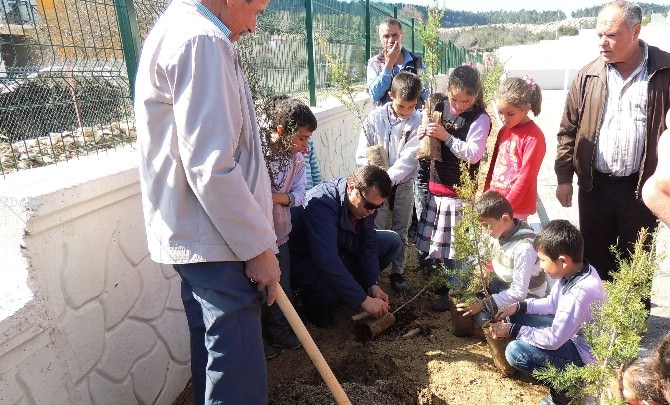 Öğrenciler Okul Bahçesinde 250 Fidanı Toprakla Buluşturdu
