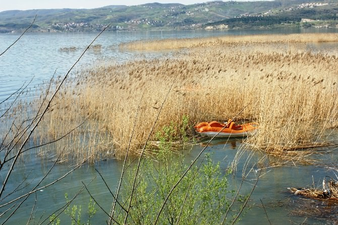 Yanan Sazlıklar Göl Suları Altında Kaldı