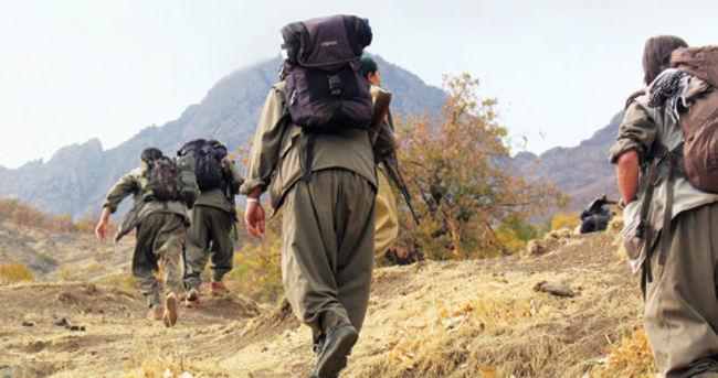 Habur'da 4 PKK'lı teslim oldu