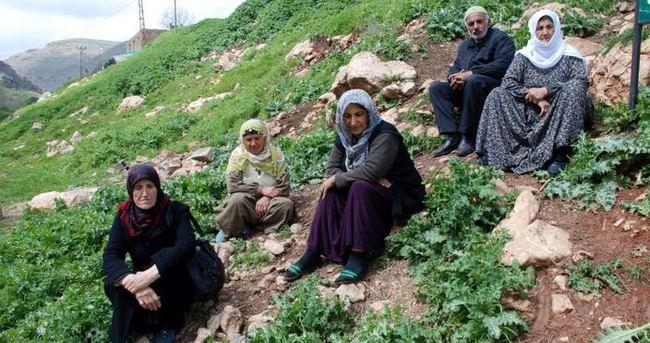'Köye döndük ev yok'