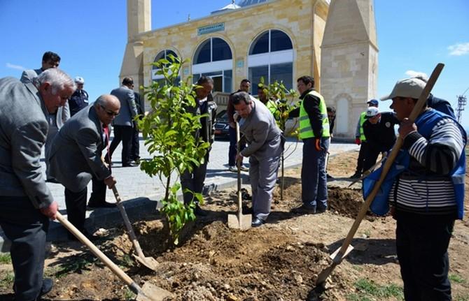 Vali Şentürk Yapımı Tamamlanan Şeyh Edebali Camii'inde İncelemede Bulundu
