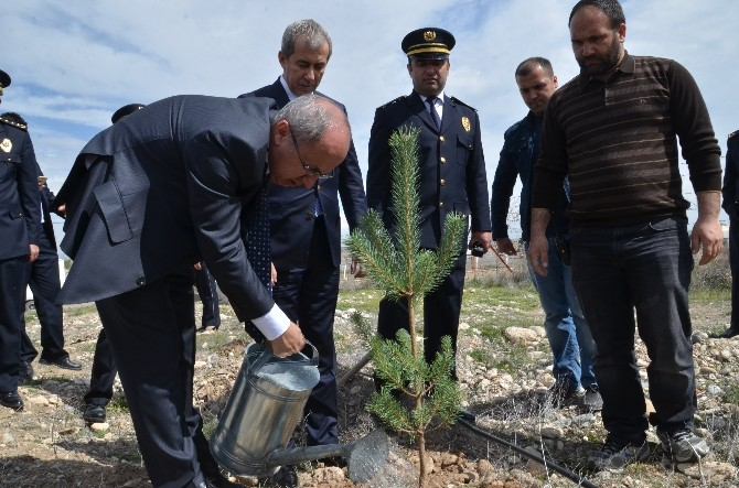 Iğdır'da 'Bir Dikili Ağacımız Olsun' Projesi