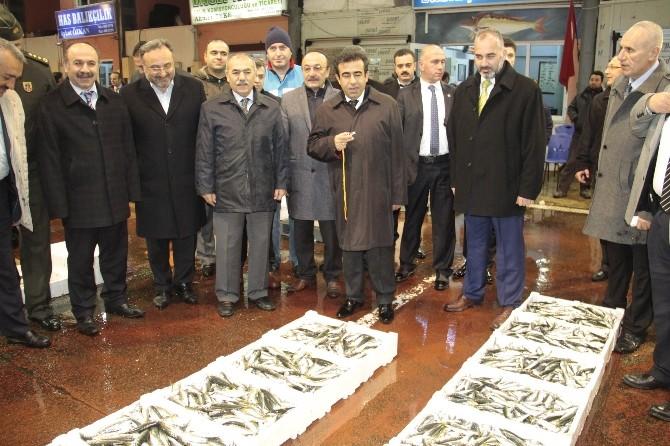 Kocaeli Valisi, Ereğli'de Balık Mezatına Katıldı