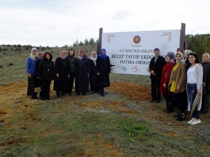 AK Partili Kadınlar, Recep Tayyip Erdoğan Hatıra Ormanına Fidan Dikti
