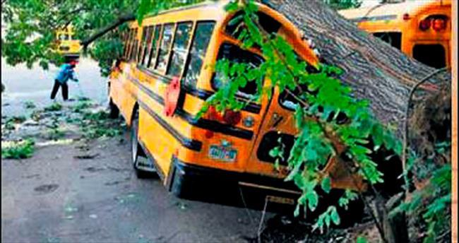 Bangladeş'te otobüs kazası: 25 ölü