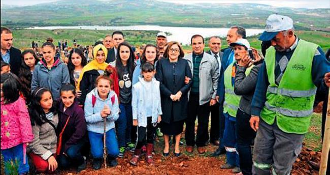 Gaziantep'te 250 bin fidan dikiliyor