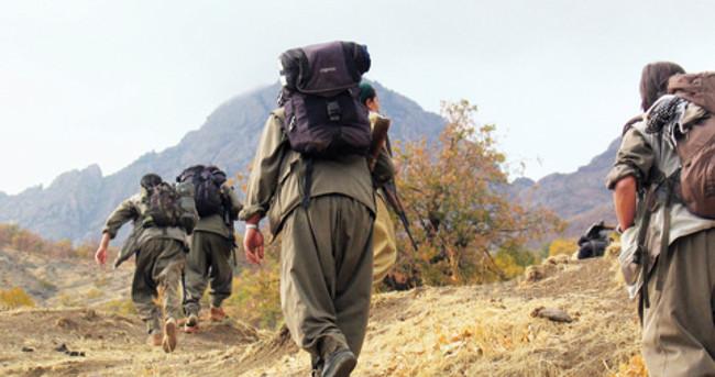 Diyarbakır'da 10 suçtan aranan PKK'lı yakalandı