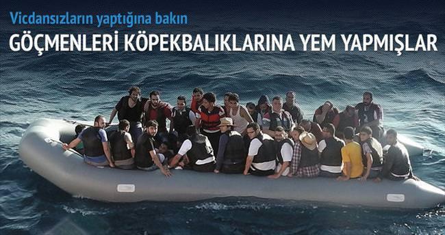 Göçmenleri köpekbalıklarına atıyorlar