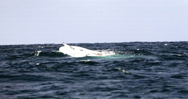 Akdeniz'de tekne faciası: 41 ölü