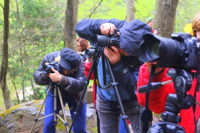 Doğa Yürüyüşü Ve Foto Safari Düzenlendi