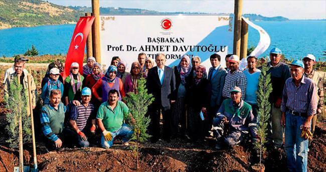Başbakan Davutoğlu hatıra ormanı