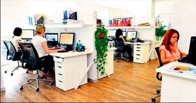 Ofis çalışanlarının verimliliğine yeşil katkı