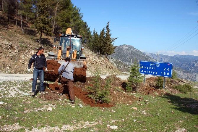 İbradı'da Ağaçlandırma Çalışmaları Başlatıldı