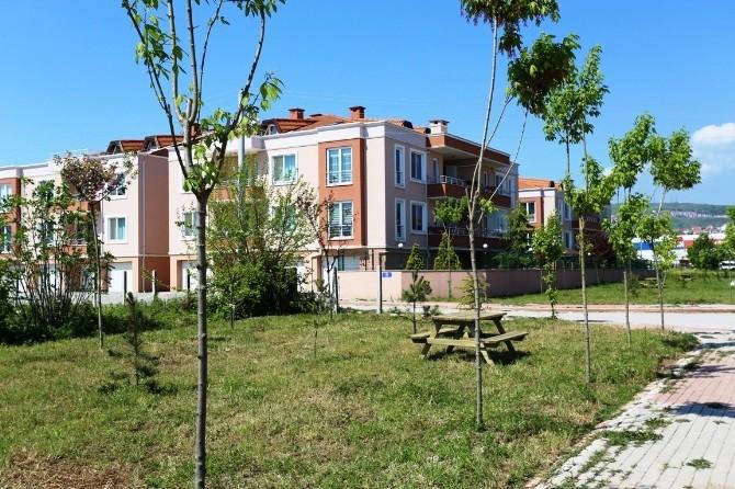 Serdivan Belediyesi Altyapı Çalışmalarına Devam Ediyor