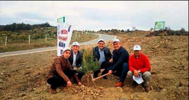 Gaziemir'de 500 çam fidanı dikildi