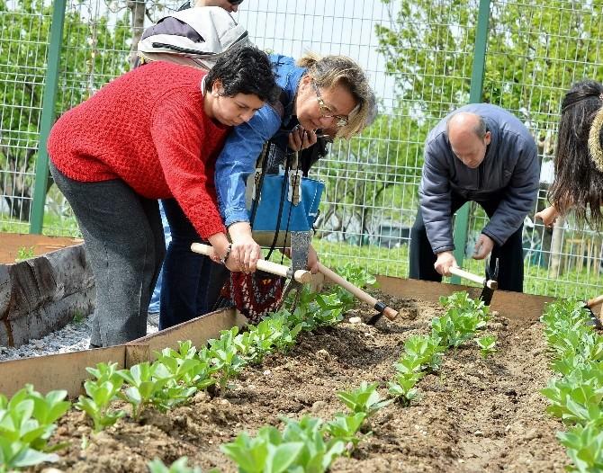 Mutluluk Bahçesi'ne Engelli Ailelerden Tam Not