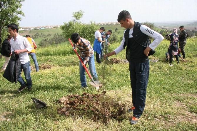 Diyarbakır Emniyet Müdürlüğü'nden Fidan Dikim Etkinliği