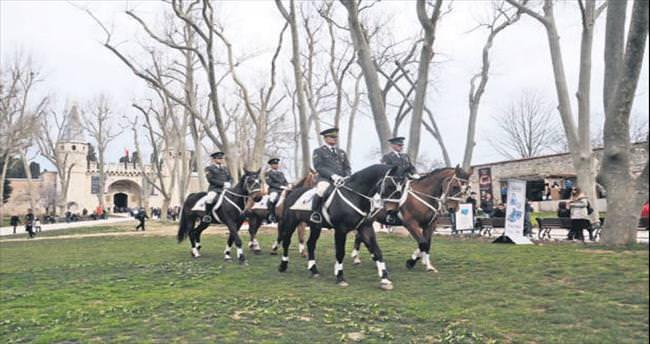 Topkapı Sarayı'nın Avrupalı atları