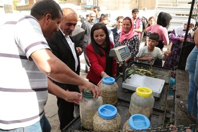 Silopi'de Köy Ürünleri Pazarı Kuruldu