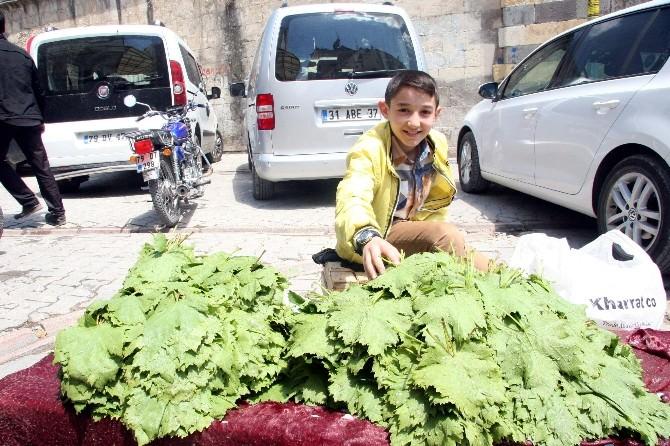Kilis'te Asma Yaprağı Piyasada