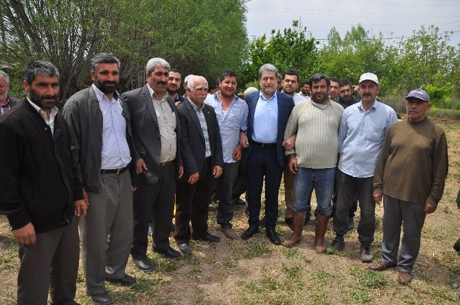 "Yaşar: ""AK Parti Memleket Partisi"""