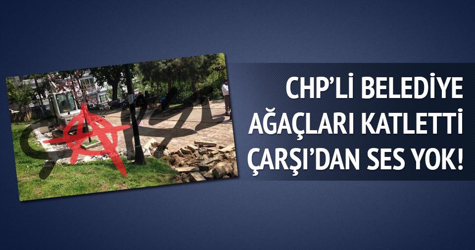 CHP'li belediye ağaçları katletti Çarşıdan ses yok