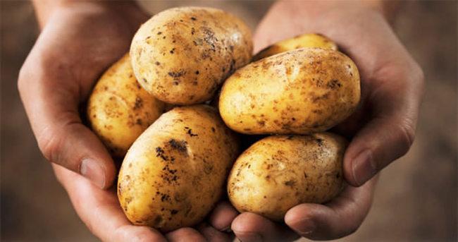 Bu şehirde patates 60 kuruş