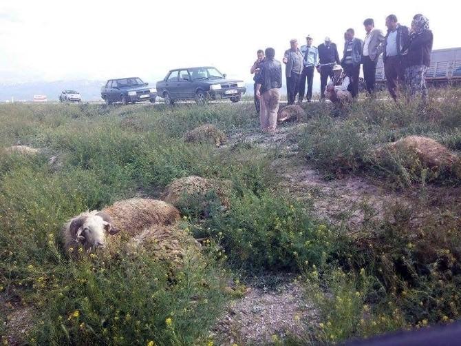 Şarampole Yuvarlanan Kamyonet Koyun Sürücüne Çarptı