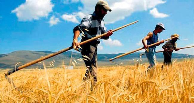 Tarım alanında müşteri sayısı 1 milyonu geçti