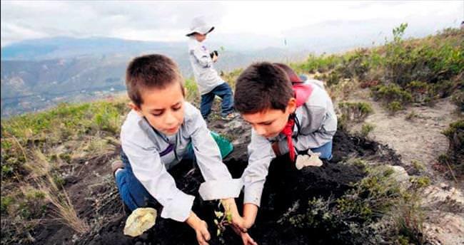 Ağaçlandırma rekoru Türkiye'den Ekvador'a geçti