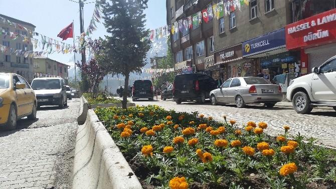 Hakkari Belediyesi'nden Yeşillendirme Çalışması