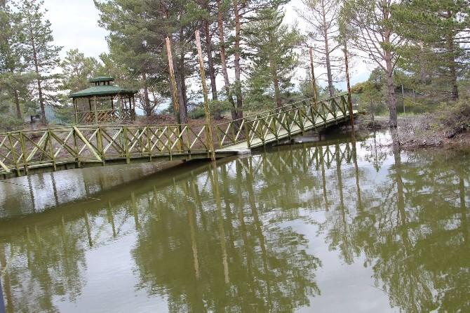 Oltu'da Bir Doğa Harikası; Kütüklü Göl