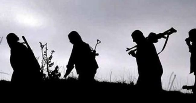 Diyarbakır'da 2 PKK'lı teslim oldu