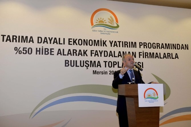 'Tarıma Dayalı Ekonomik Yatırım Programları