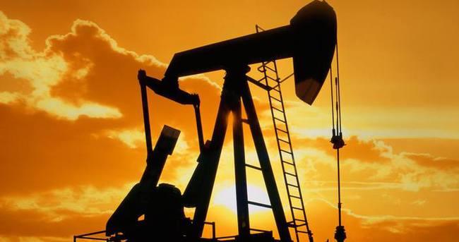 Türkiye Petrolleri'ne 4 petrol arama ruhsatı