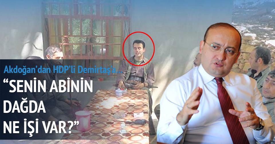Akdoğan'dan Demirtaş'a: Senin abin...