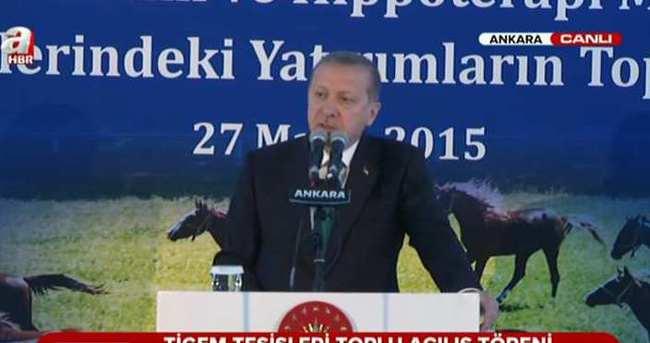 Erdoğan: Atın bizim kültürümüzde önemli yeri var