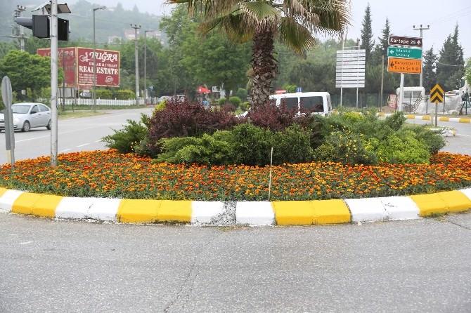 Yeşil Sapanca'da Çiçekler Açıyor