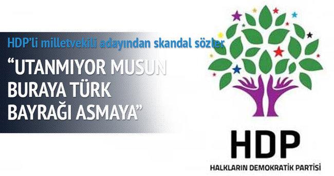 HDP'li milletvekili adayından skandal sözler