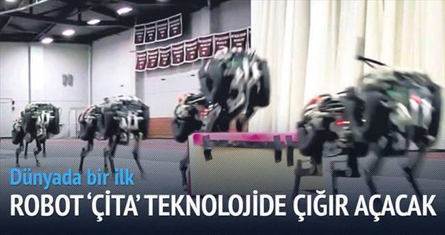 Engelli parkurlar Çita'ya vız geldi