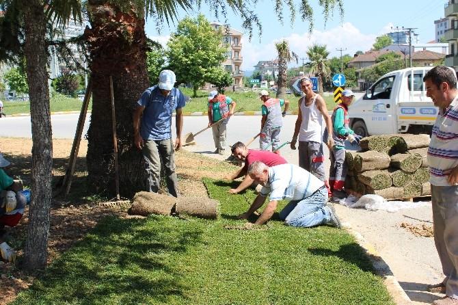 Akçakoca Belediyesi Çevre Düzenine Özen Gösteriyor