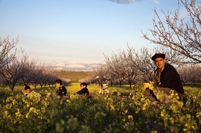 Yeşilyurt Her Mevsim Güzel İlkbahar Fotoğraf Yarışması Tamamlandı