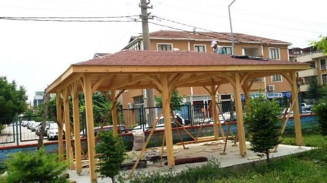İzmit Belediyesi'nden Okullara Kamelya