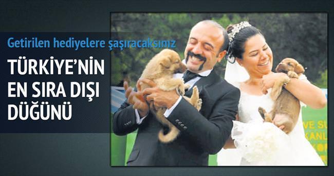 Köpekli düğüne mamalı hediye