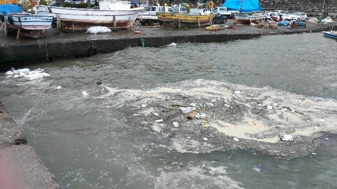 Yağışla Sürüklenen Atıklar Balıkçı Barınağında Kirlilik Oluşturdu